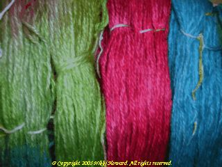 Closeup of Parrot Yarn